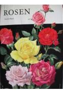 Rosen. Zweiter Band (Рози)