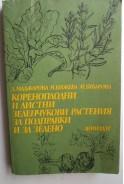 Кореноплодни и листни зеленчукови растения за подправки и за зелено